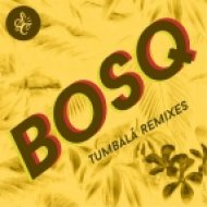 Bosq feat. Tempo Alomar - Tumbalá (Auntie Flo Remix)