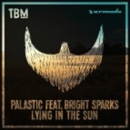 Palastic Ft. Bright Sparks - Lying In The Sun (Original Mix)