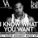 Busta Rhymes Ft. Mariah Carey & Kolya Funk - I Know What You Want (Vadim Adamov Mash UP) (Original Mix)