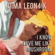 Dima Leon4ik - Love Me Like  (Original Mix)