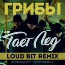 Грибы - Тает Лёд (Loud Bit Remix) (Remix)