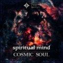 Spiritual Mind - Melodelic (Original Mix)