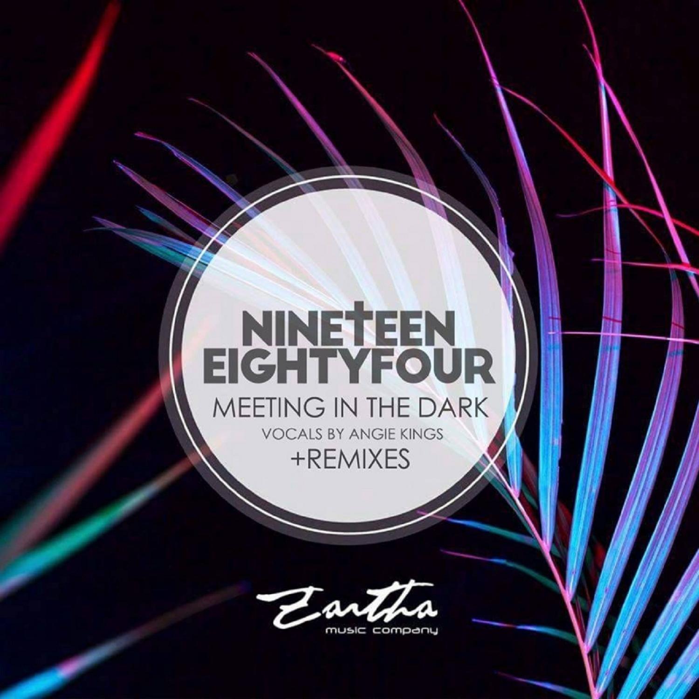 Nineteen Eightyfour - Meeting in the Dark (Audio Luxury Remix)
