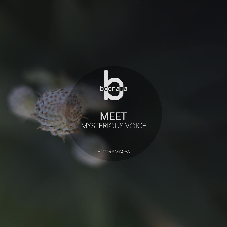 Meet - Dionisea  (Original Mix)