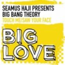 Big Bang Theory - Saw Your Face (Original Mix)