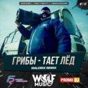 Грибы - Тает Лёд (Maldrix Radio Remix)