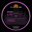 Anami - Universe (Original mix)