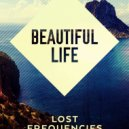 Lost Frequencies feat Sandro Cavazza -  Beautiful Life  (Oleg Alvarez remix)