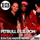 Pitbull feat. Lil Jon - Krazy (Ilya Calvados Radio Remix) (remix)