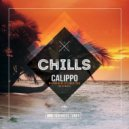 Calippo   - Never Really Liked You (Sons of Maria Instrumental Mix)