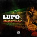 Lupo - Frequencies Of Dub (Original Mix)