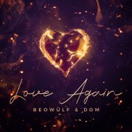 Beowülf & Dom - Love Again  (Extended Mix)