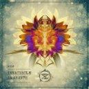 Innacircle - Juriaan (Original Mix)