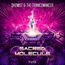 Qhemist & The Trancemancer - Sacred Molecule  (Original Mix)