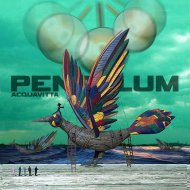 Pendulum - The Island (Acquavitta Bootleg)