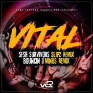 Vital & Slipz - Bouncin  (D Minus Remix)