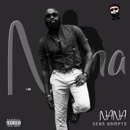 Sean Dampte - Nana (Original Mix)