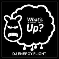 Dj Energy Flight  - What\'s Up?  (Radio Mix)