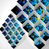 BLUETECH - Crystalline Forms  (Backstage Gurus Remix)