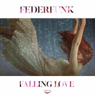 FederFunk - Falling Love (Original Mix)