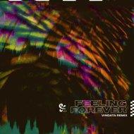 PLS&TY - Feeling Forever (Vindata Remix)