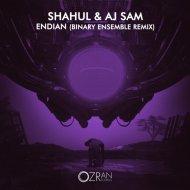 Shahul  &  Aj Sam  - Endian (Binary Ensemble Remix)