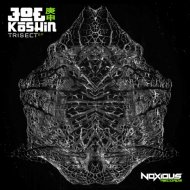 Joe Koshin - Sequence 13 (Original Mix)