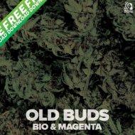 Bio & Magenta - Old Buds (Original Mix)