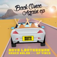 Dave Leatherman, Bruce Nolan - Back Once Again  (Original Mix)