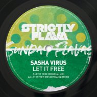 Sasha Virus - Let It Free (Melodymann Remix)