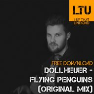 Dollheuer - Flying Penguins  (Original Mix)