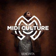 Midi Culture - Senorita  (Original Mix)