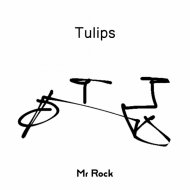 Mr Rock - Tulips (Original Mix)