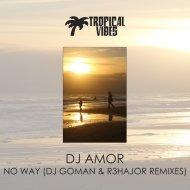 DJ Amor - No Way (DJ Goman Remix)