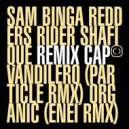 Sam Binga & Rider Shafique - Organic (Enei Remix)