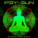 Psy-Sun - DUB Terror (Earth Space)