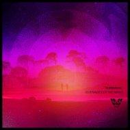Puremusic - Reach It (Original Mix)
