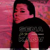 Sena Kana with Wiz Khalifa & Sheppard - Up (Dzeko Remix)