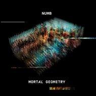 Numb - When Gravity Fails (Original Mix)