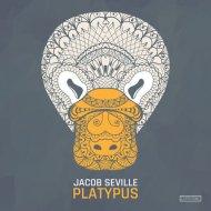 Jacob Seville - Platypus (Original Mix)