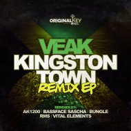 Veak - JNGL  (RMS Remix)