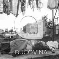 Dino - Bucovina (Original Mix)
