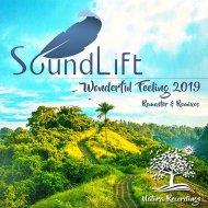 SoundLift - Wonderful Feeling (Dmitriy Kuznetsov Remix)