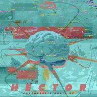 Hector - Lanterns (Original Mix)