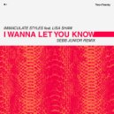 Immaculate Styles feat. Lisa Shaw - I Wanna Let You Know  (Sebb Junior Underground Dub Mix)