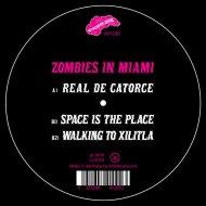 Zombies In Miami - WALKING TO XILITA  (Original Mix)