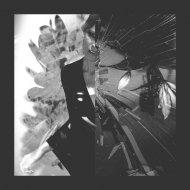 Jess Chalker - Teardrop (Massive Attack Cover)