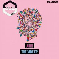 Anih - The Vibe (Original Mix)