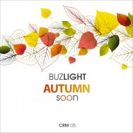 BuzLight - I Dont Believe You Anymore (Original Mix)