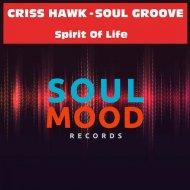 Criss Hawk, Soul Groove - Spirit of Life (Original Mix)